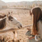 Dziewczyna z długimi jasnymi włosami, kamiąca konia.
